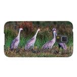 Pájaros - humedales de la Florida - grúas de Funda Para Galaxy S5