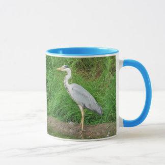 Pájaros irlandeses
