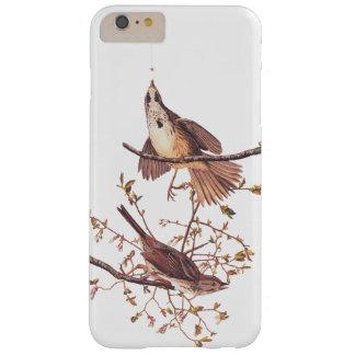 Pájaros largos de Audubon del gorrión con la araña Funda Barely There iPhone 6 Plus