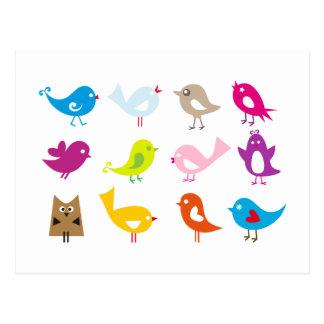 Pájaros lindos coloridos postal
