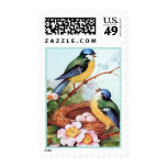 Pájaros lindos de la jerarquización en vintage de  sellos