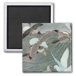Pájaros marinos del vintage, gaviotas que vuelan imán cuadrado