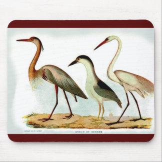 Pájaros MOUSEPAD de la imagen de las GARZAS del vi