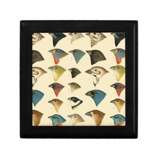 Pájaros norteamericanos cajas de recuerdo