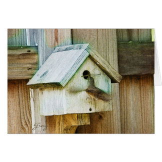 Pájaros Notecards del patio trasero Felicitaciones