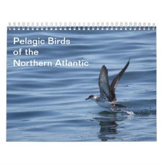 Pájaros pelágicos del calendario atlántico