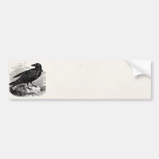 Pájaros personalizados cuervo del pájaro del negro pegatina para auto