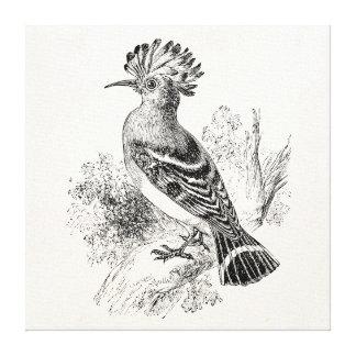 Pájaros personalizados pájaro del Hoopoe de Impresiones En Lona