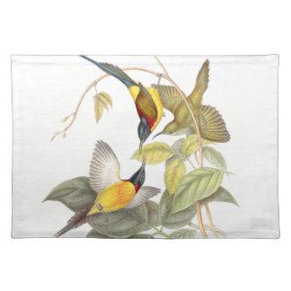 Pájaros Placemat de Sunbird de Goulds Manteles