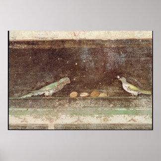 Pájaros que comen nueces póster