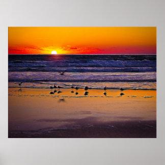 Pájaros que juegan en la resaca en la salida del s póster