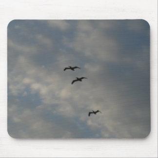 pájaros que vuelan arriba tapete de raton