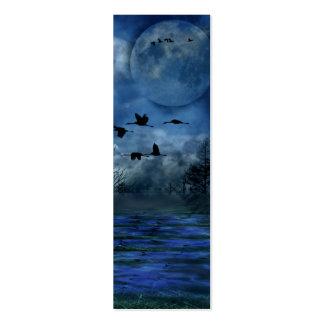 Pájaros que vuelan en la señal de la noche tarjetas de visita mini