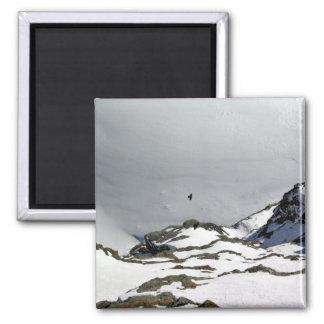 Pájaros que vuelan sobre la montaña nevosa iman de nevera