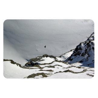Pájaros que vuelan sobre la montaña nevosa iman