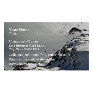 Pájaros que vuelan sobre la montaña nevosa tarjetas de visita