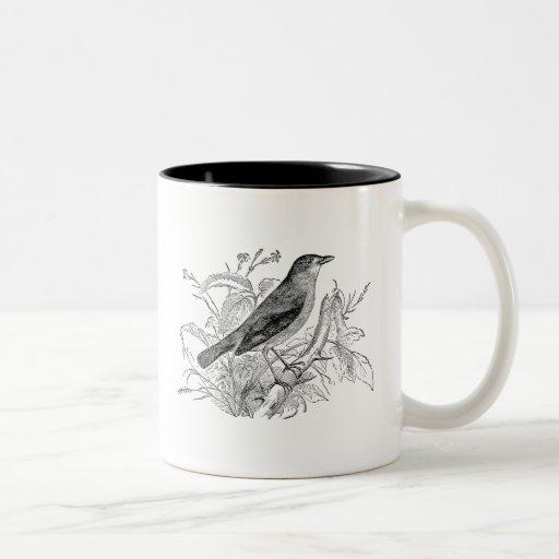 Pájaros retros personalizados pájaro del usignuolo tazas de café