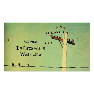 Pájaros retros tarjetas de visita