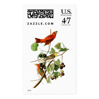 Pájaros rojos América de John James Audubon del Estampillas
