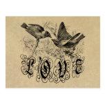 Pájaros ropa y regalos del amor del vintage tarjeta postal