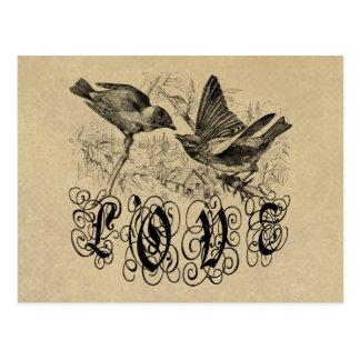 Pájaros ropa y regalos del amor del vintage tarjetas postales