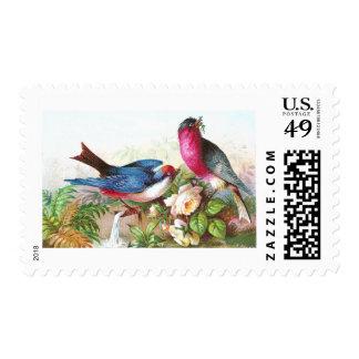Pájaros, rosas y tromba marina coloridos timbres postales