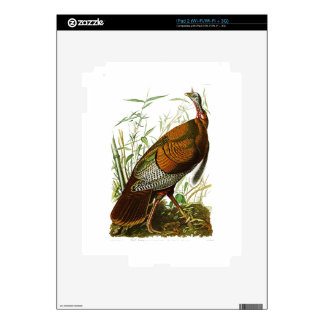 Pájaros salvajes de Turquía John James Audubon de iPad 2 Calcomanías