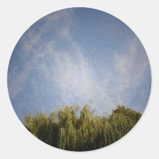 Pájaros sobre la ciudad del alfabeto, East Pegatina Redonda