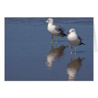 Pájaros Tarjeta De Felicitación