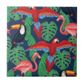 Pájaros tropicales en colores brillantes azulejo cuadrado pequeño