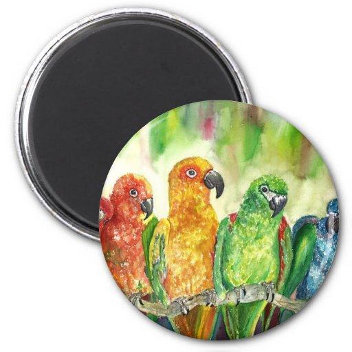 Pájaros tropicales iman de frigorífico