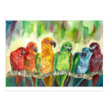 Pájaros tropicales postal