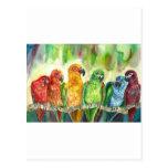 Pájaros tropicales tarjeta postal