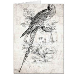 Pájaros verdes de Maccaw del pájaro del Macaw de l Tarjeta De Felicitación