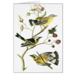 Pájaros Vintage-3 en una rama-notecard Tarjeta Pequeña