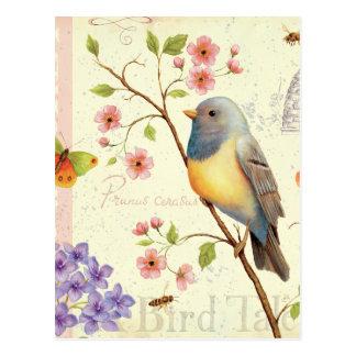 Pájaros y abejas tarjeta postal