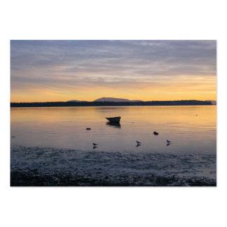 Pájaros y barco de mar tarjetas de visita grandes