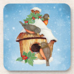 Pájaros y Birdhouse del invierno Posavasos