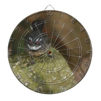 pájaros y flora australianos tablero dardos