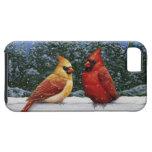 Pájaros y luces de navidad cardinales iPhone 5 fundas