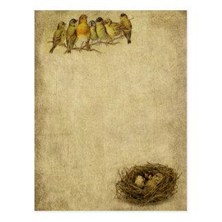 Pájaros y postales elegantes y artísticos de la je