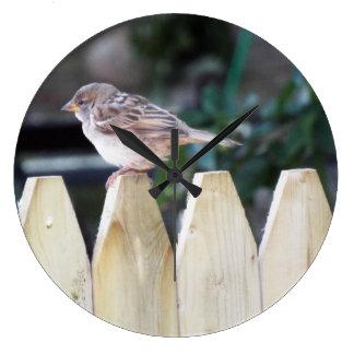 Pájaros y relajación reloj redondo grande