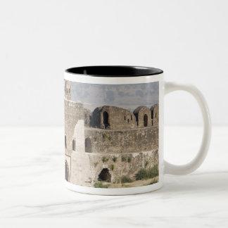 Pakistan, Dina. Talaqi Gate as seen from the Coffee Mugs
