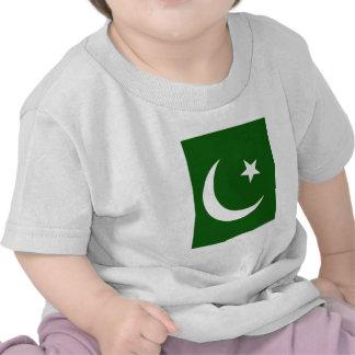 Pakistan High quality Flag Tshirt