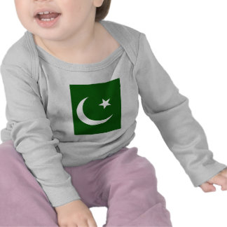 Pakistan High quality Flag T Shirt