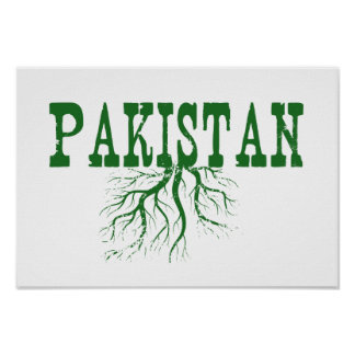 Pakistan Roots Poster