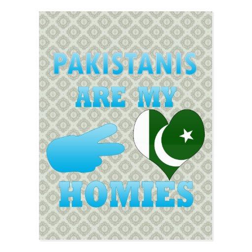 Pakistanis are my Homies Postcard