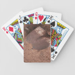 pala y flor barajas de cartas