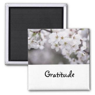 Palabras a vivir cerca: Imán de la gratitud