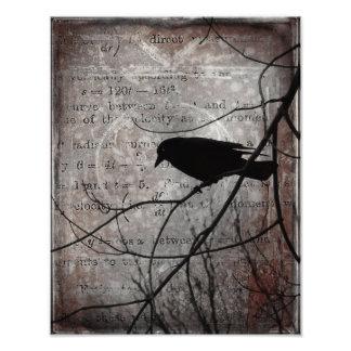 Palabras del cuervo fotografía